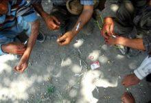 Photo of İranda tələbələrin 20% -i narkotiki təcrübədən keçirib