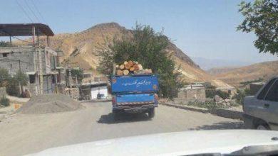 Photo of Bəykəndi şəhərində 7,5 ton qaçaq ağac aşkarlanıb