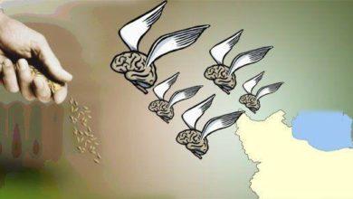 Photo of İran mütəxəssislərinin ölkədən getməsinə görə 2-ci yerdədir