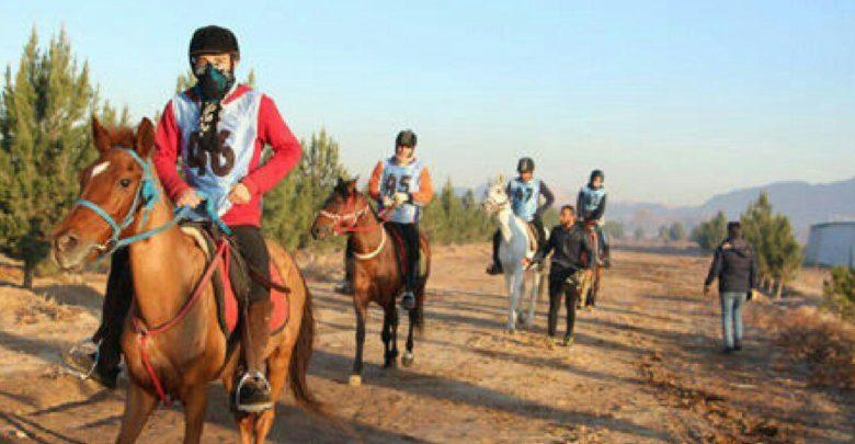 Photo of مسابقه اسبسواری «جام آذربایجان» در مرند برگزار میشود