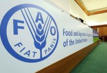 Photo of گام جدید «فائو» برای کمک به مدیریت احیای دریاچه اورمیه