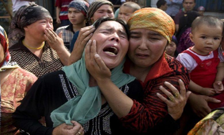Photo of استغربت صمت العالم.. إليسا تصف إلى جانب المسلمين الإيغور