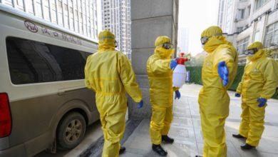 Photo of شمار قربانیان کروناویروس به ۳۶۰ نفر افزایش یافت
