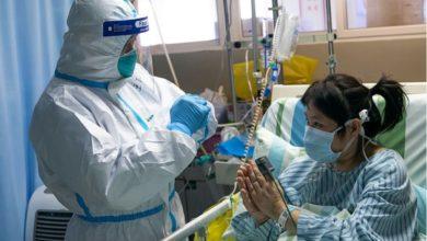 Photo of شمار قربانیان کرونا ویروس به ۱۴٨۶ تن و تعداد مبتلایان در جهان به بیش از ۶۵۰۰۰ تن رسید