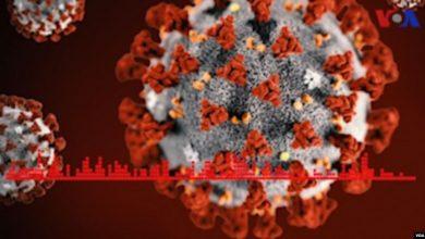 Photo of نشانههای ابتلا به ویروس کرونا چیست و چطور آن را از سایر بیماریها تشخیص بدهیم؟