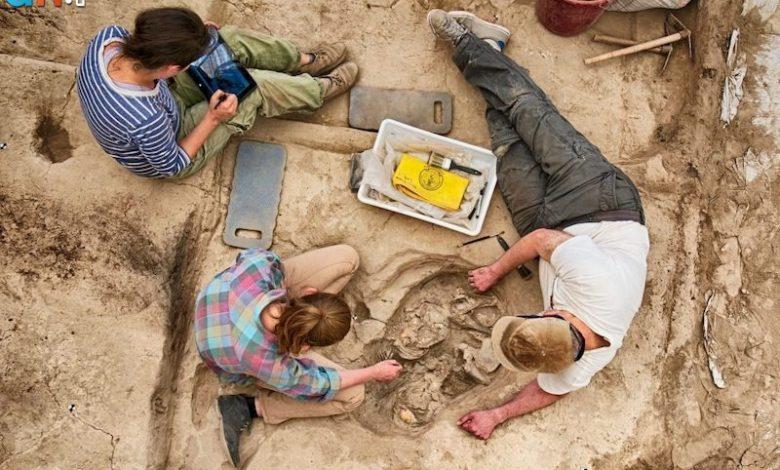 Photo of ساکنان «چاتال هویوک» در خانه های خود دفن میشدند
