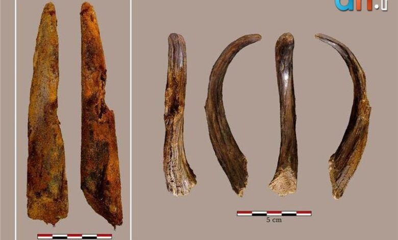 Photo of قدیمیترین ابزار چوبی نئاندرتال در اسپانیا یافت شد