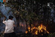 Photo of آتشسوزی در غرب و جنوب ایران؛ بالگردهای آبپاش باز هم اعزام نشد