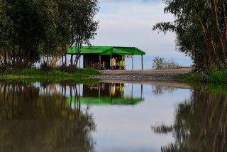 Photo of گالری عکس از ترکمنصحرا